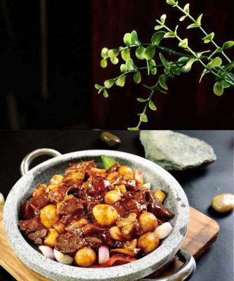 石锅烤椒牛肉
